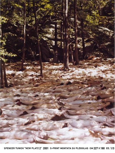 Spencer Tunick, 'New Platz 2', 2001