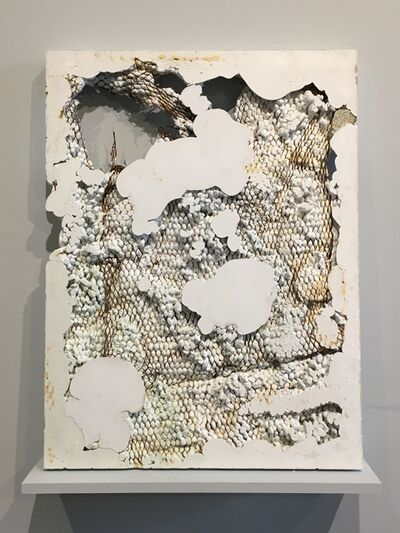 Jack Henry, 'Anemone 1', 2019