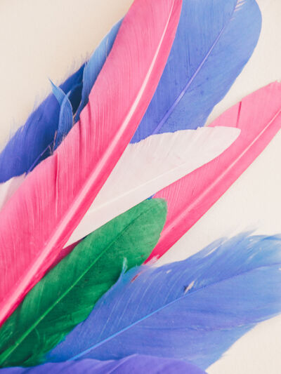 Maria Piessis, 'Feather or Not 10'