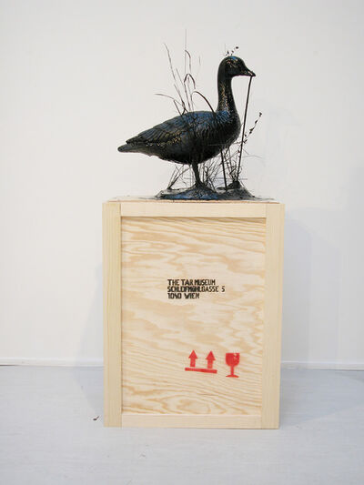 Mark Dion, 'The Tar Museum - Goose', 2009