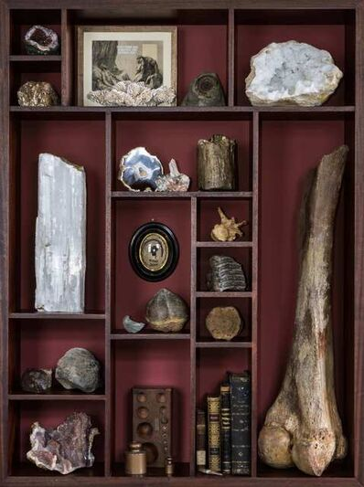 The Connor Brothers, 'Wonder Cabinet with 50,000 year old Wooly Mammoth Femur', 2016