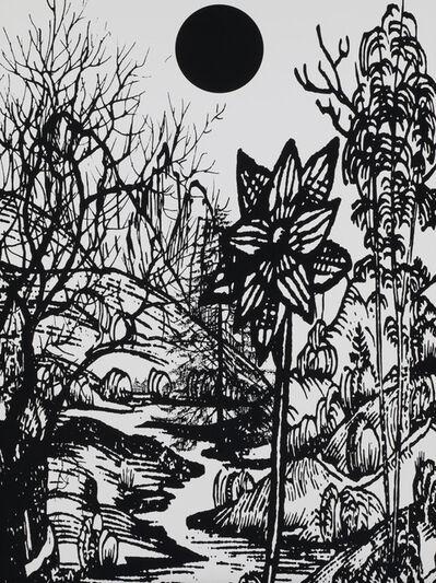 Paul Morrison, 'Untitled 04 from Calathidium', 2006