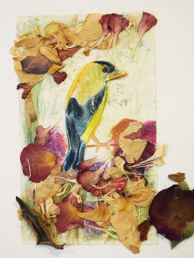 Valerie Wax, 'Golden-Yellow Finch', 2017