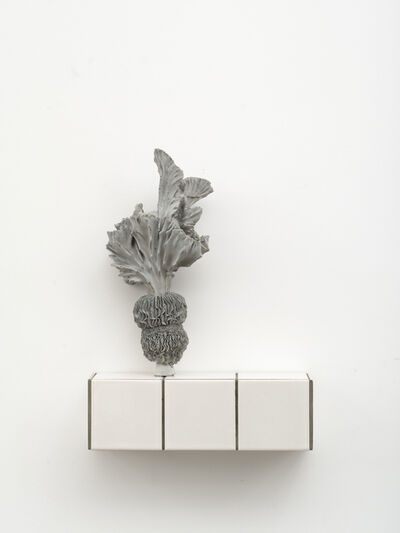 Zhang Ruyi 張如怡, 'Individual Plant-17', 2018