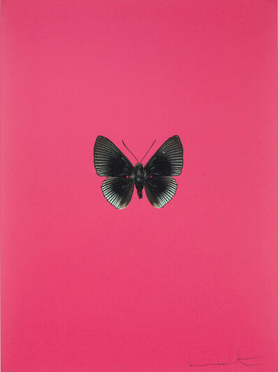 Damien Hirst, 'It's a Beautiful Day: one plate', 2013
