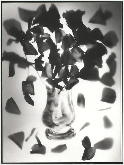 Edouard Boubat, 'Photogramme II, Amelie EB, Paris', 1995
