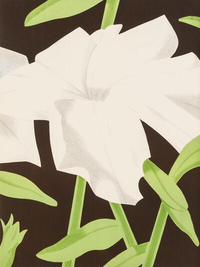 Alex Katz, 'White Petunia', 1969