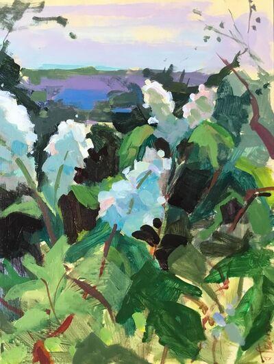 Janet Pedersen, 'Sunlit Hydrangeas', 2019