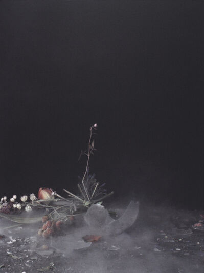 Ori Gersht, 'Untitled 10, from the series Time After Time', 2007