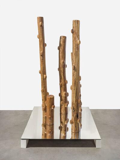 Claudia Comte, 'Pillar Corals', 2019