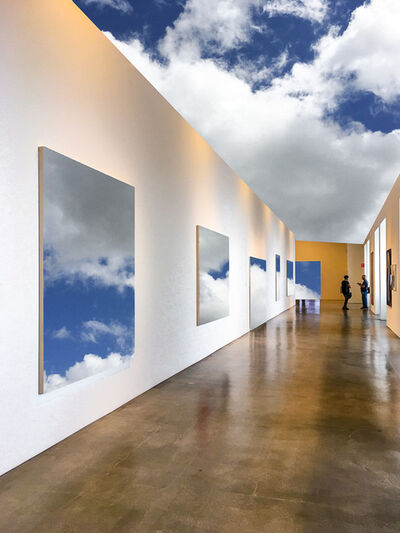 Harry Spitz, 'Nature's Gallery', 2020
