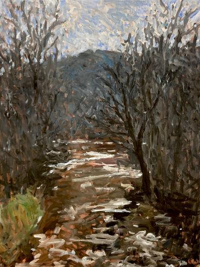 Eugene Leake, 'Deer Creek at Ivory Mills', 2000