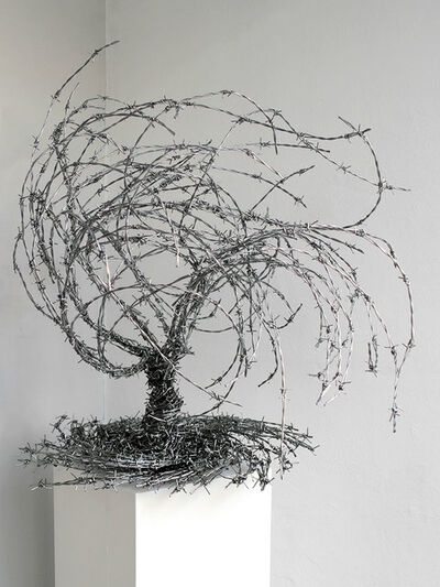 Abdul Rahman Katanani, 'Olivie Tree 1', 2016