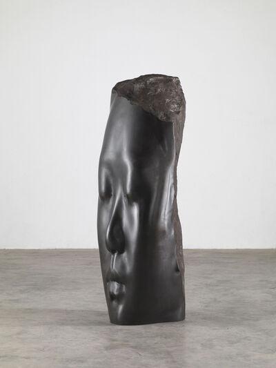 Jaume Plensa, 'Rui Rui´s Dream', 2014