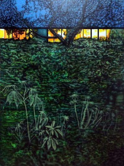 Eamon O'Kane, 'Louisiana at Night with Ferns', 2019