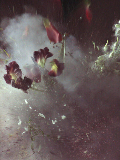 Ori Gersht, 'Time After Time: Untitled 27', 2007