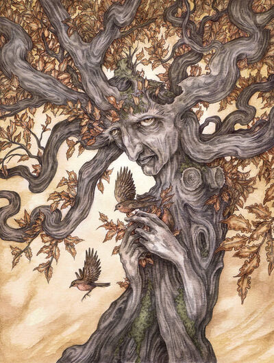 Adam Oehlers, 'Ask the Oak', 2018