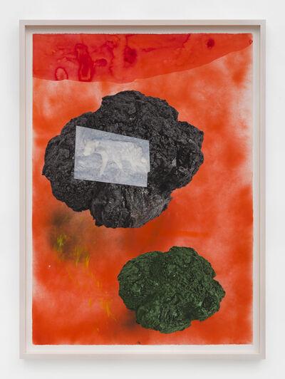Cameron Platter, 'Wild Dog', 2015