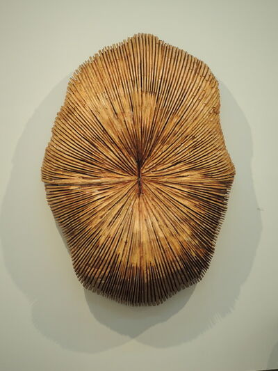 Hideaki Yamamoto, 'Indication', 2014