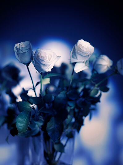 Indira Cesarine, 'Les Roses Blanches La Nuit Bleue', 2020