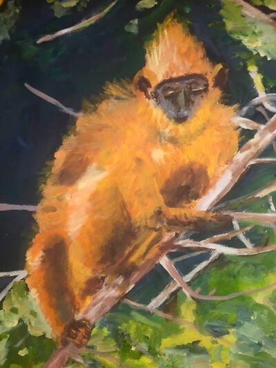 Marjorie Magid, 'Yellow Monkey', 2018