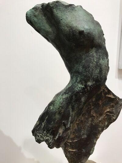 Peter Ijsseldijk, 'Maid of stone', ca. 2016