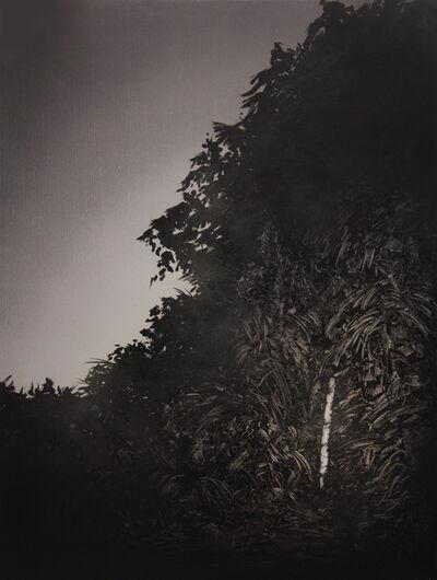 Wouter van der Laan, 'Film Noir', 2015