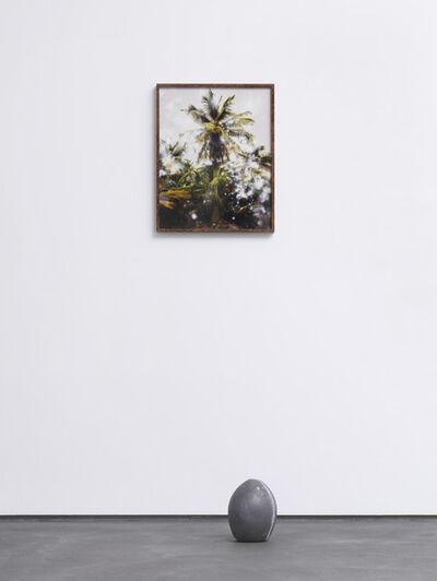 Julian Charrière, 'Coconut Lead Fondue', 2016