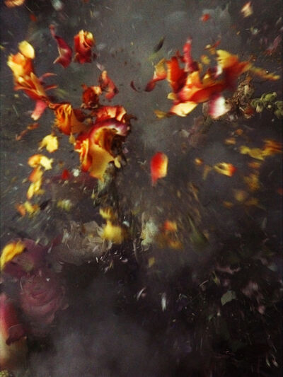Ori Gersht, 'Untitled #29, from series Time After Time', 2006