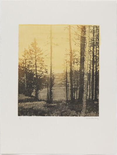 Paul Winstanley, 'Landscape 36', 2010