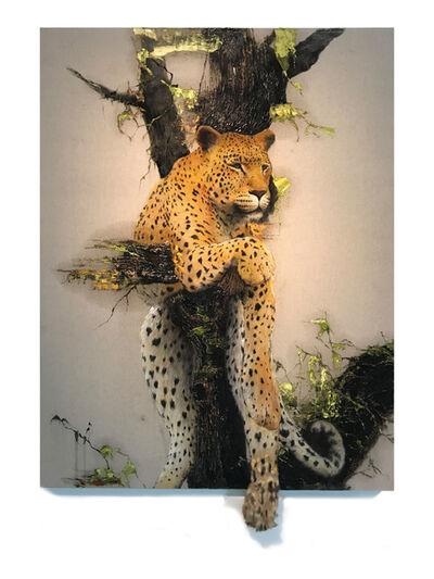 Kim Nam Pyo, 'Instant Landscape-Leopard#3', 2019