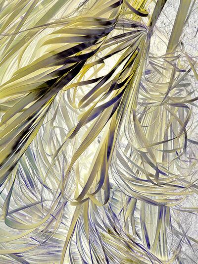 Irene Imfeld, 'Zone of Transformation 2712', 2015