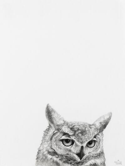 Adonna Khare, 'Owl', 2019