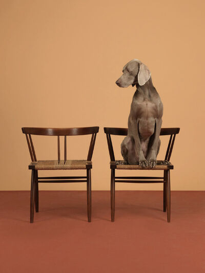 William Wegman, 'One On', 2015