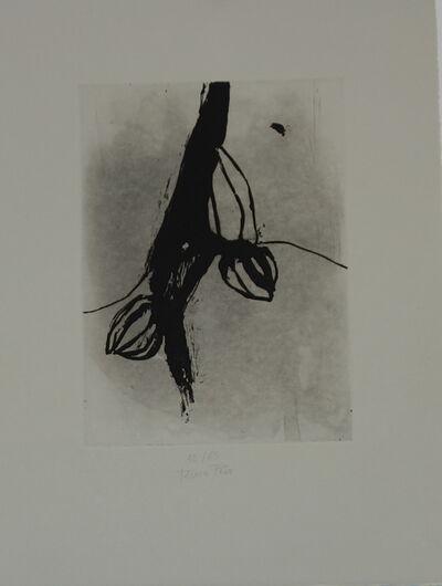 Teresa Pera, 'without title', 2009