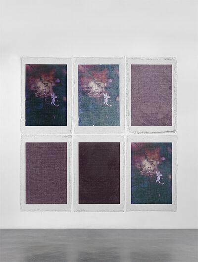 Valerie Snobeck, 'Bruised Flowers', 2014