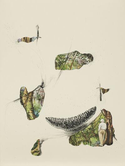 Catalina Schliebener, 'Fungus', 2014