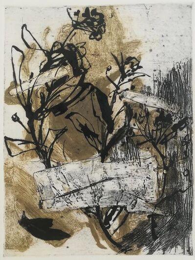 Zita Argyelán, 'Herbarium', 2018