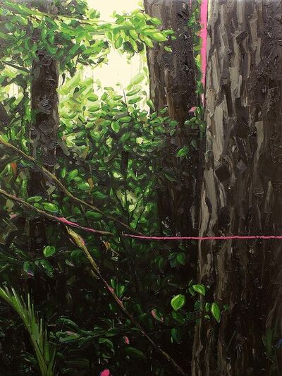 Fabio Baroli, 'Untitled, 'Selva-Mata' series', 2018