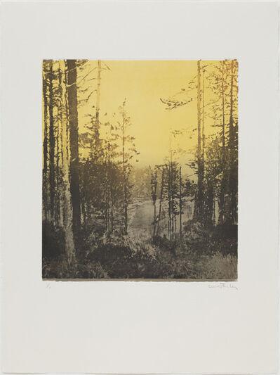 Paul Winstanley, 'Landscape 34', 2010