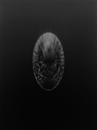Gerda Schütte, 'Souvenir d'Afrique-2017 N° B3', 2017