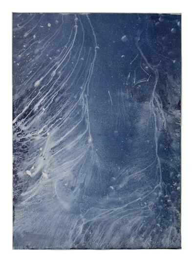 Meghann Riepenhoff, 'Ecotone #941 (Bainbridge Island, WA 10.29.20, Persistent Drizzle, Draped in Rain Garden)', 2020