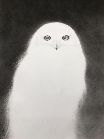 Amy Ross, 'Luminous Wanderer'
