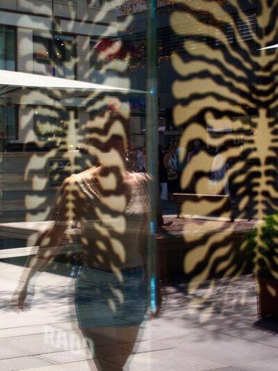 Susan Aurinko, 'Wildlife II, Vienna', 2019