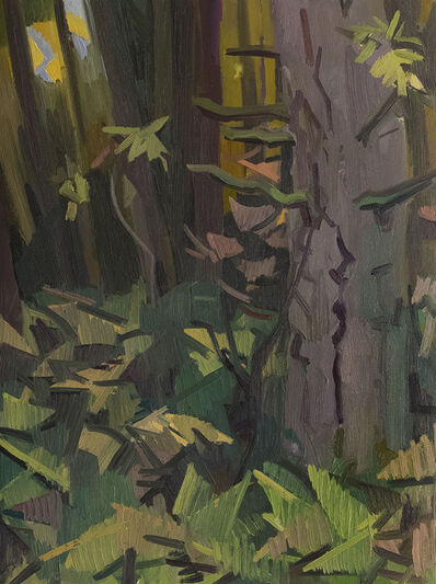 Kimberly Trowbridge, 'Douglas Fir', 2019