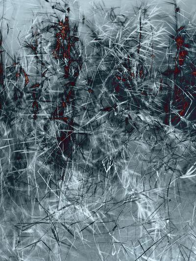 Santeri Tuori, 'Water Lilies 11', 2020