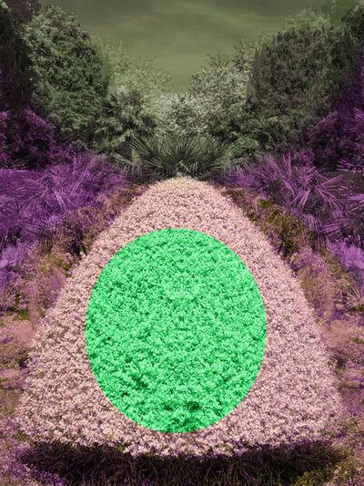 Helen Sear, 'Surreal Bush 5', 2020