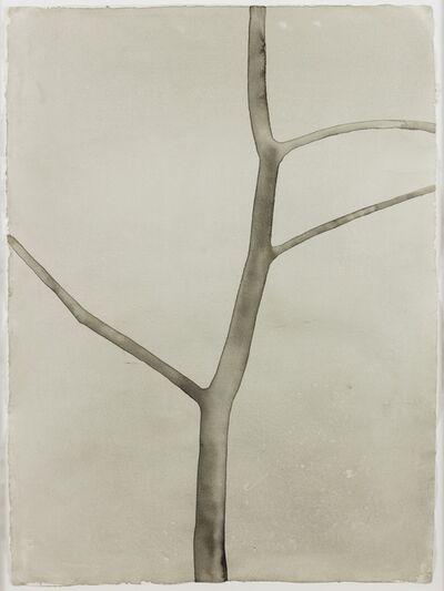 Mats Gustafson, 'Tree 1', 2003