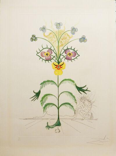 Salvador Dalí, 'Flora Dalinae Viola Cogitans', 1968