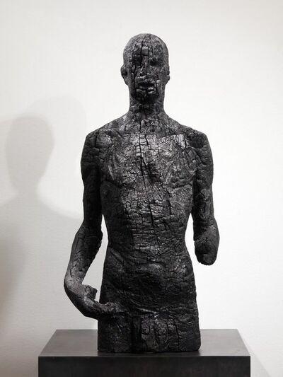 Aron Demetz, 'inequivocabile conclusione ', 2011